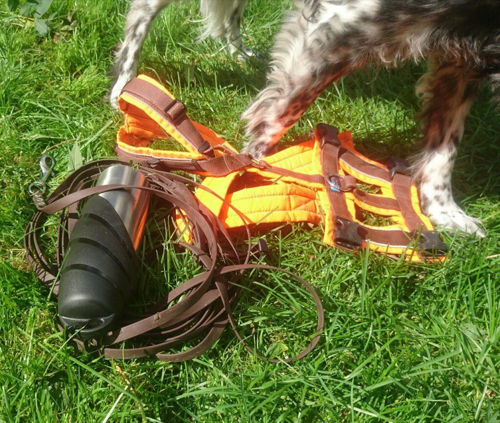 Mantrailing-Ausrüstung für das Training